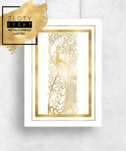 plakat ze złotym pawiem