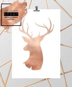 głowa jelenia na plakacie na ścianę