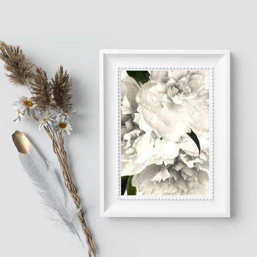 Plakat przedstawiający białe kwiaty