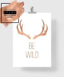 plakat z porożem jelenia