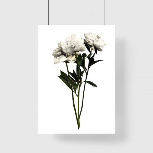 plakat biały botaniczny jako dekoracja pionowa