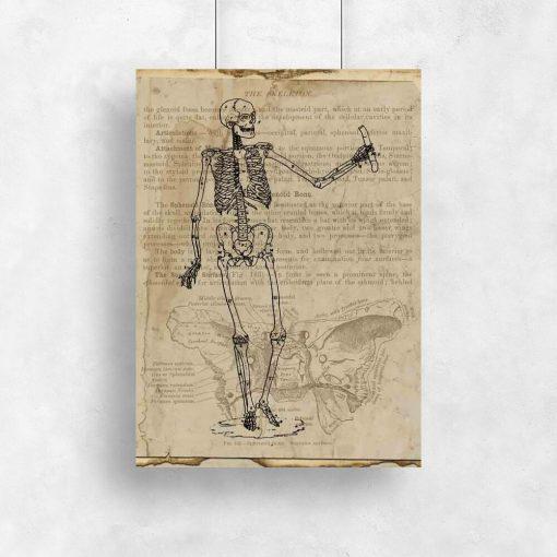 Plakat - Szkielet na papirusie