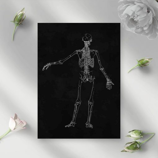 Plakat do gabinetu fizjoterapii - Szkielet