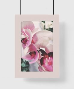 Plakat ze storczykiem do pokoju