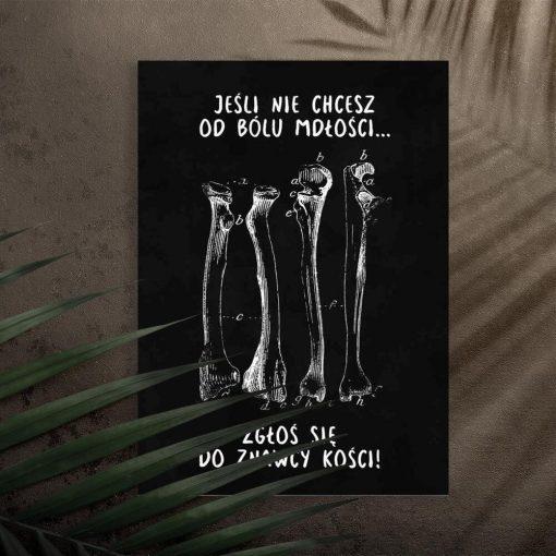 Plakat do gabinetu fizjoterapii - Kości