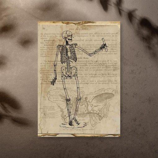 Plakat - Szkielet na starym papierze