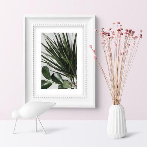 Plakat z passe-partout i rośliną