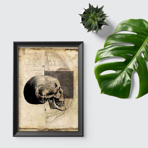 Plakat z czaszką dla fizjoterapeutów