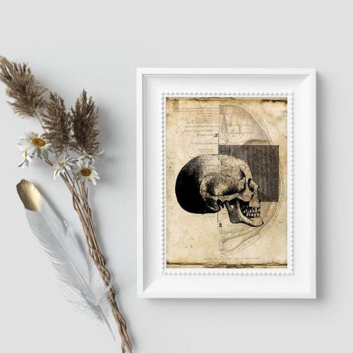 Plakat z czaszką dla fizjoterapeuty