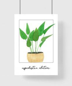 Plakat z rośliną do salonu