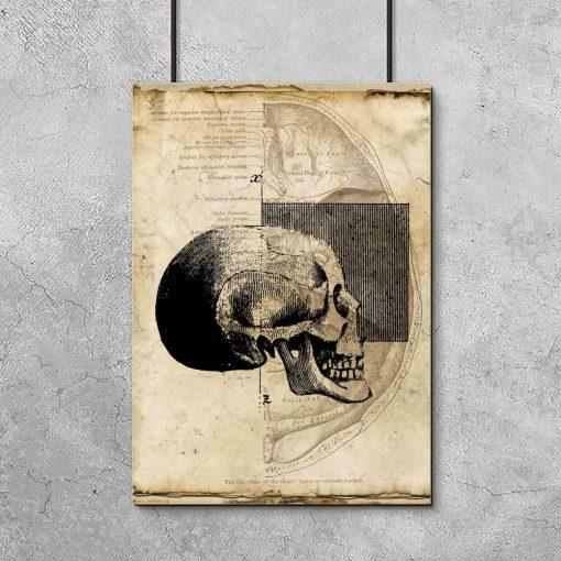 Plakat z czaszką do gabinetu fizjoterapii