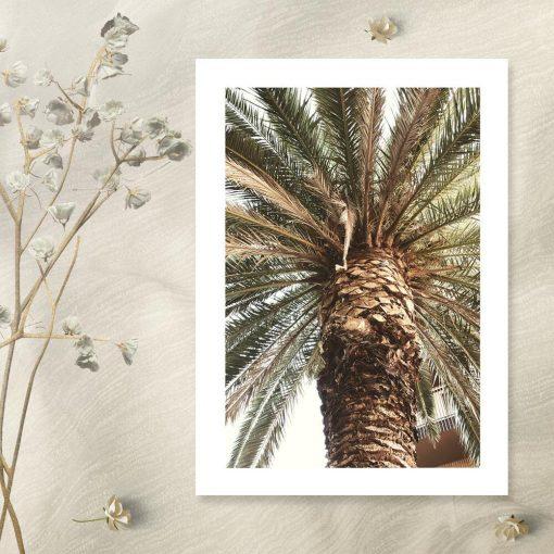 Plakat do salonu - Motyw egzotycznej palmy