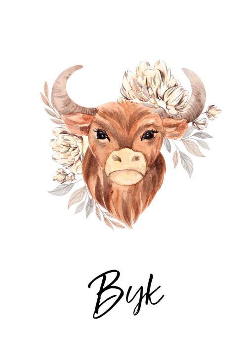 Plakat z bykiem