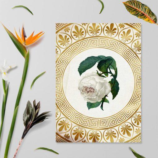 Plakat na prezent - Biała róża