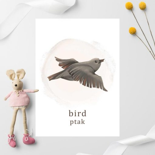 Plakat do pokoju chłopca z ptakiem