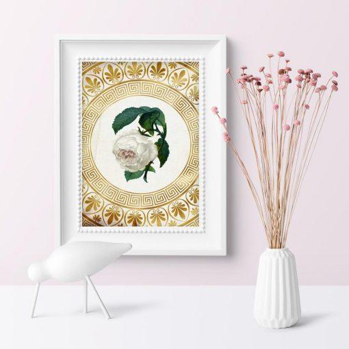 Plakat do sypialni - Biała róża