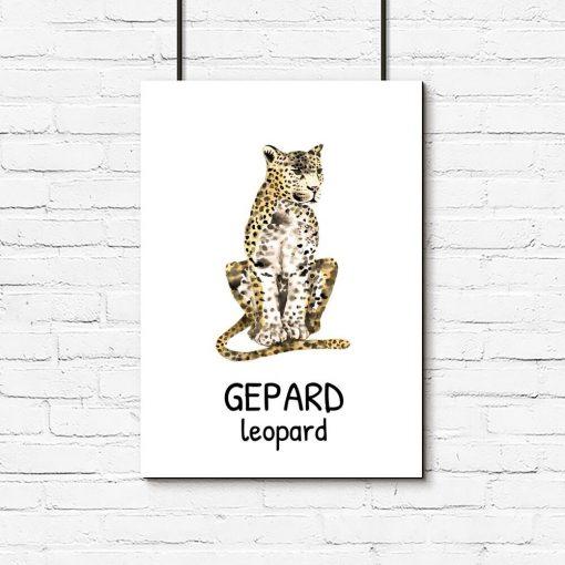 plakat z odpoczywającym gepardem do pokoju dziecka