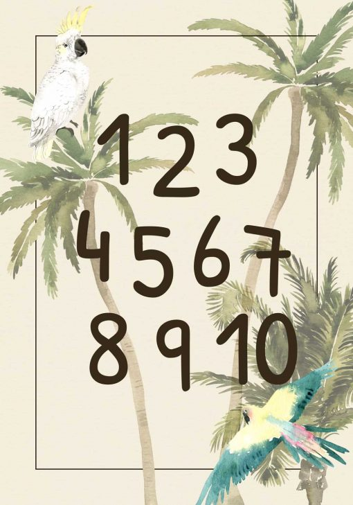 ara i kakadu w dżungli- plakat dla chłopca