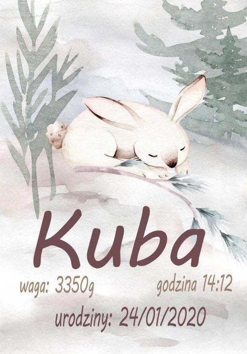 Plakat - Metryczka z królikiem