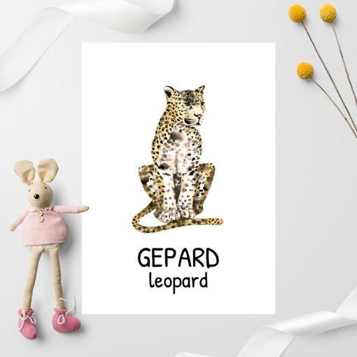 angielski na plakacie - beżowy gepard