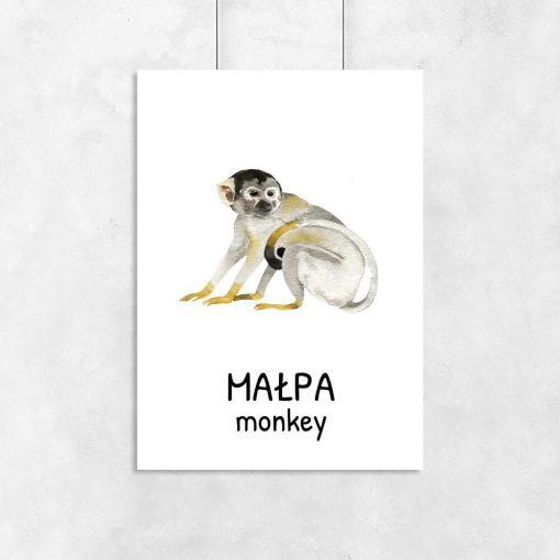 Plakat z małpą do pokoju dziecka