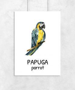 Plakat z papugą dla dziecka
