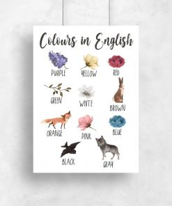 Nauka kolorów - Plakat dla przedszkolaka