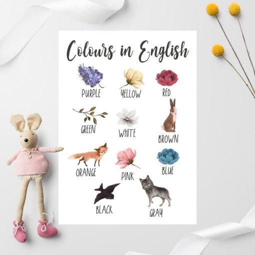 Nauka kolorów - Plakat dla dziewczynki