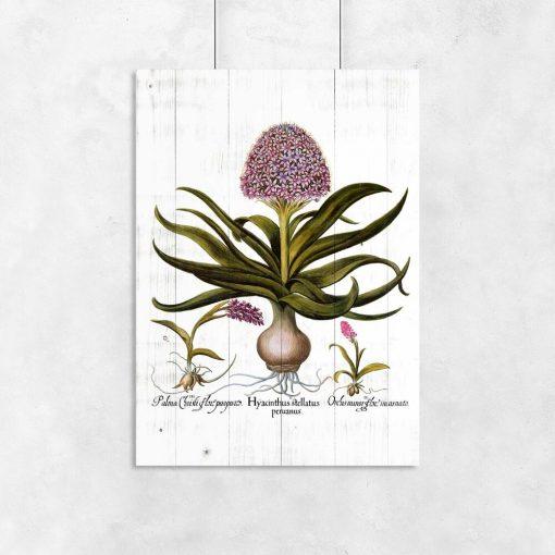 Plakat - Fioletowe kwiaty na deskach do przedpokoju