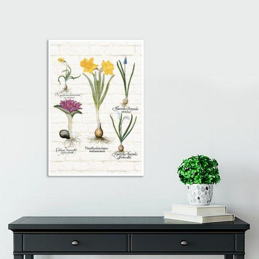 Barwny plakat z motywem wiosennych kwiatków do szkoły