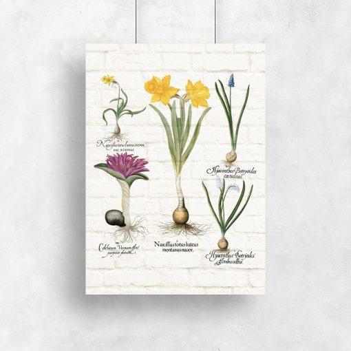 Barwny plakat z motywem wiosennych kwiatków na przedpokój