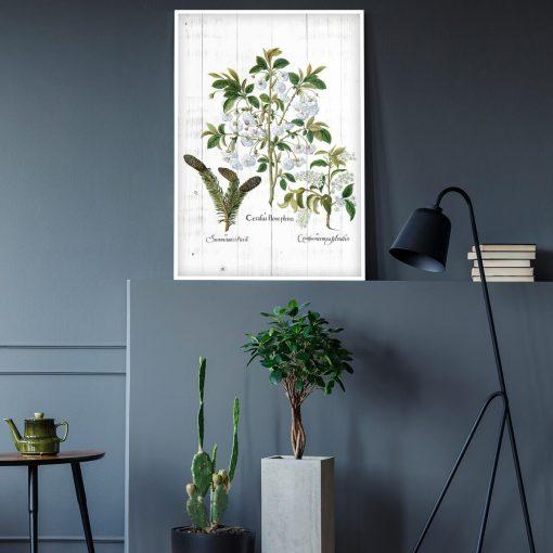 Botaniczny plakat - Kwiaty na deskach do gabinetu