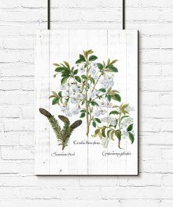 Botaniczny plakat - Kwiaty na deskach do przedpokoju