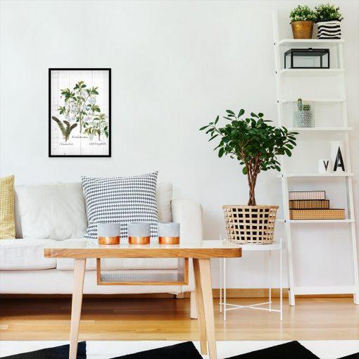 Botaniczny plakat - Kwiaty na deskach do salonu