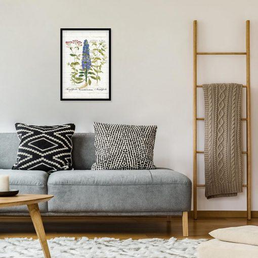 Botaniczny plakat z kolorowymi polnymi kwiatuszkami do salonu