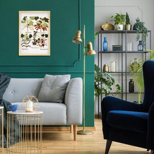 Botaniczny plakat z odmianami porzeczki do salonu