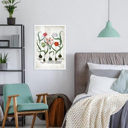 Botaniczny plakat z tulipanem do pokoju
