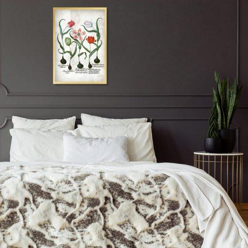 Botaniczny plakat z tulipanem do sypialni