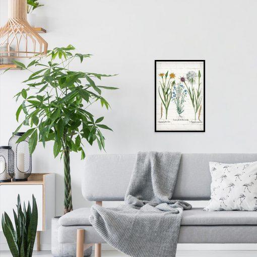 Botaniczny plakat z żółtą salsefią do salonu