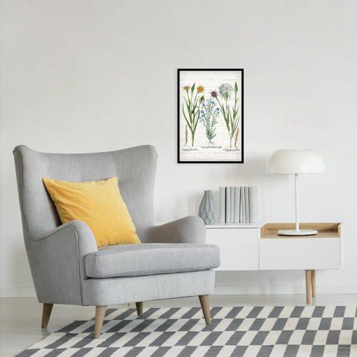 Botaniczny plakat z żółtą salsefią do sypialni
