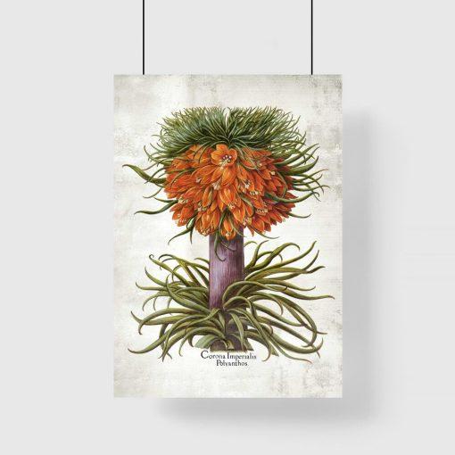 Cesarska korona - Plakat dla florysty do biura