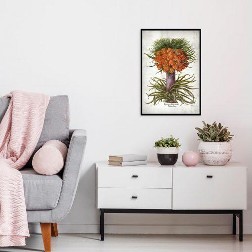 Cesarska korona - Plakat dla florysty do kuchni