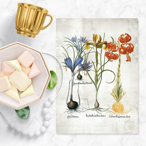 Edukacyjny plakat z motywem kwiatowym