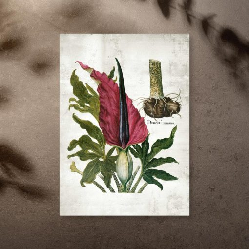 Naukowy plakat z roślinnym motywem