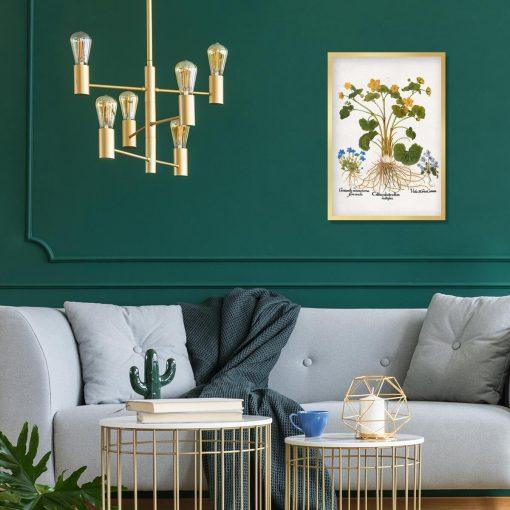 Plakat botaniczny - Łąkowe kwiaty do salonu
