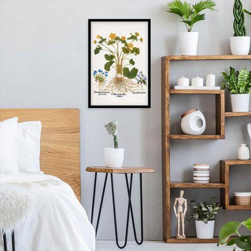 Plakat botaniczny - Łąkowe kwiaty do sypialni