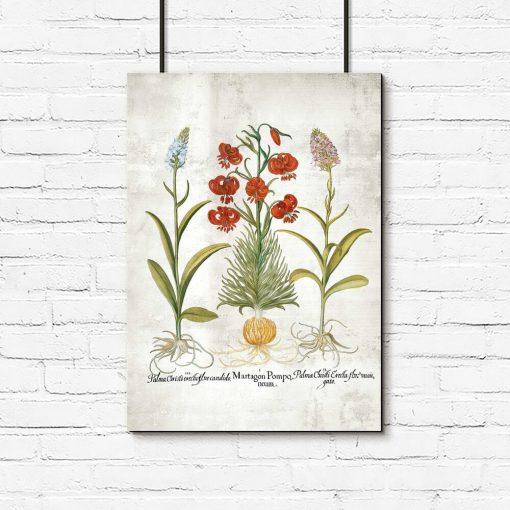 Plakat botaniczny z rącznikiem i lilią