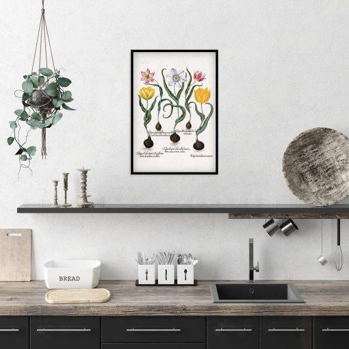 Plakat dla miłośnika kwiatów z tulipanami do kuchni