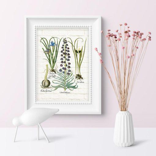 Plakat do gabinetu biologicznego z kwiatami