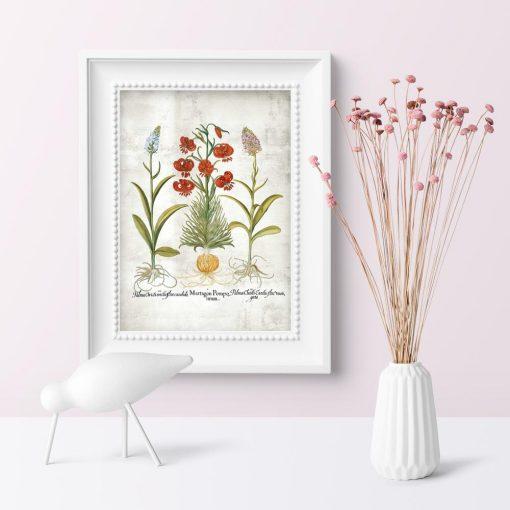Plakat edukacyjny do szkoły z motywem botanicznym